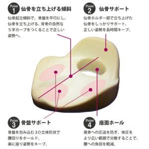 仙律クッションの詳細説明